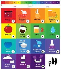 pH chart in color
