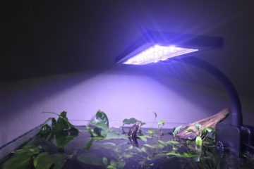 Nano aquarium light for planted tank