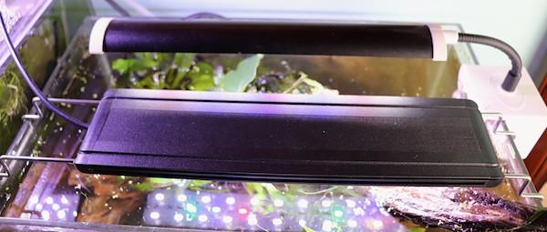 Nicrew aquarium light vs Finnex Stingray Clip light.