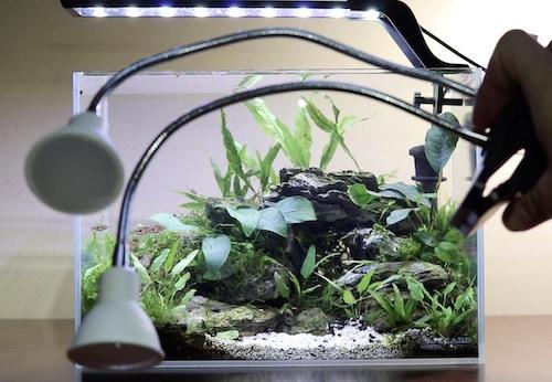 Grow light for cave aquascape.