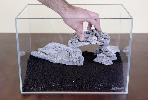 Seiryu stones in 5 gallon aquascape.