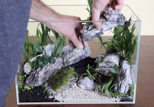 Creating a cave aquascape with Seiryu stones.