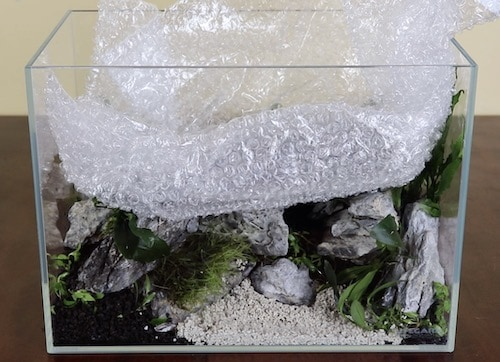 Using a plastic bag to protect an aquascape.