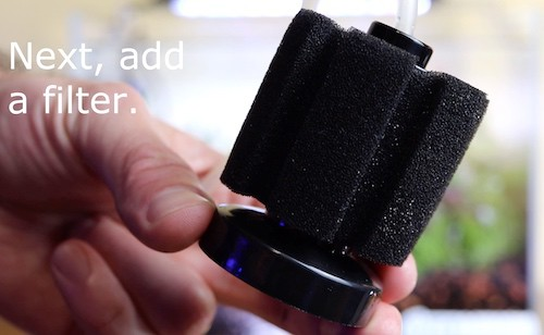 Sponge filter for aquascape.