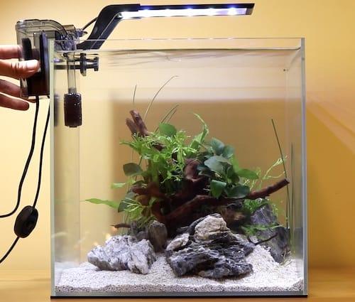 Adding aquarium filter.